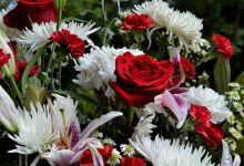 Flowers for Grief: 9 of the Best Sympathy Flowers and Their Meaning