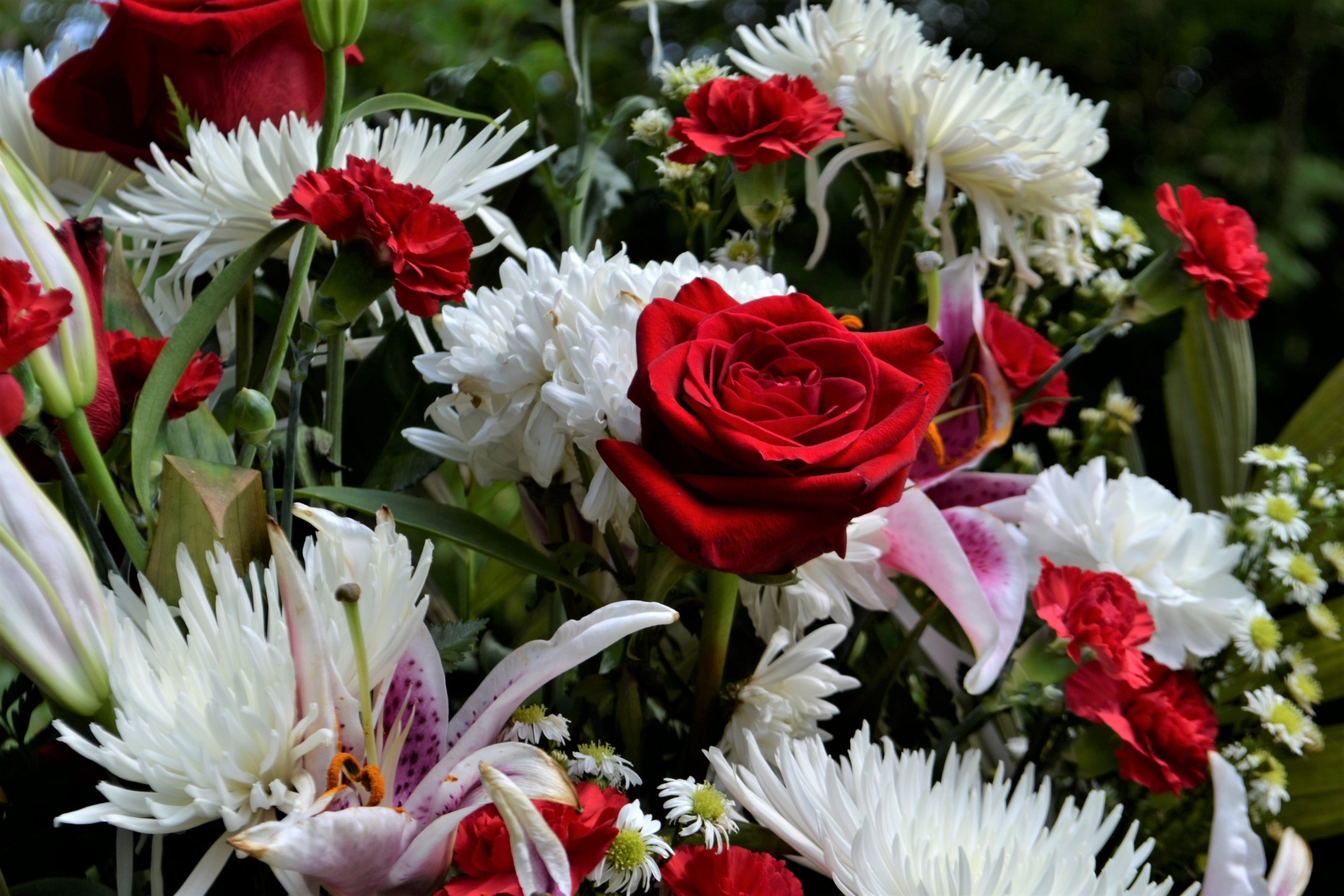 Flowers For Grief 9 Of The Best Sympathy Flowers And Their Meaning By Flowers Near Com