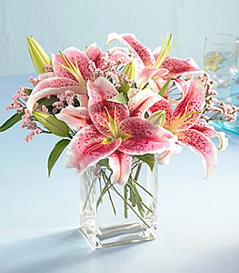 Pink Lilies Cubed