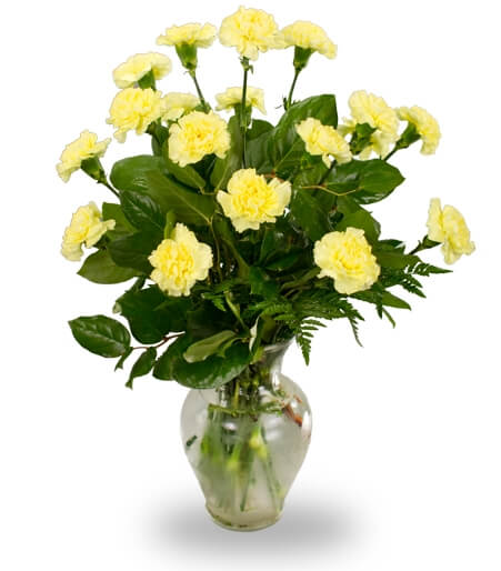 Eighteen Carnations in Clear Vase