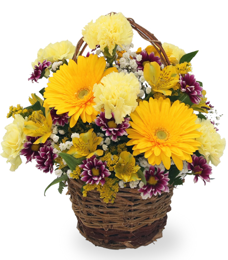 Yellow in Wicker Basket
